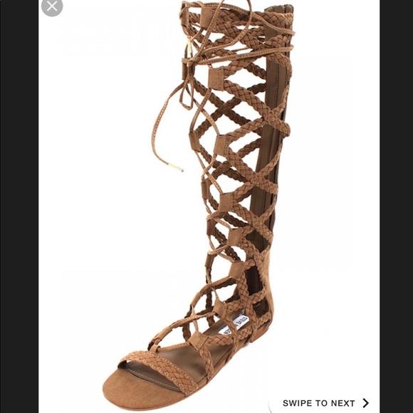 3157ee440a9 Steve Madden Sammson Gladiator Sandals